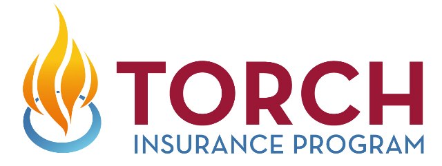 torch_logo